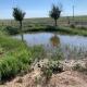 Moore hutchison pond.