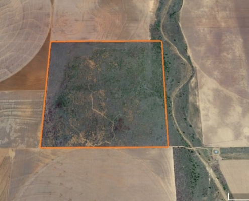 google satellite image of farm section in hall county with orange boundary marketing a green field