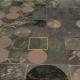 Dallam County Grass Satellite Image